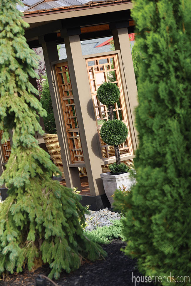 Topiaries add visual interest to a back yard