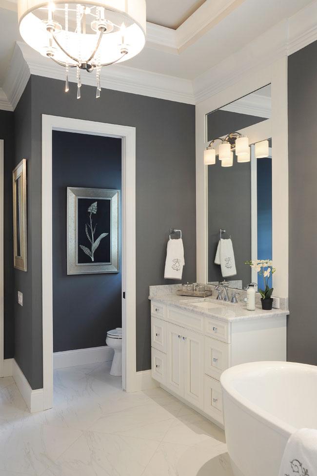 Bathroom design ideas focus on color contrast