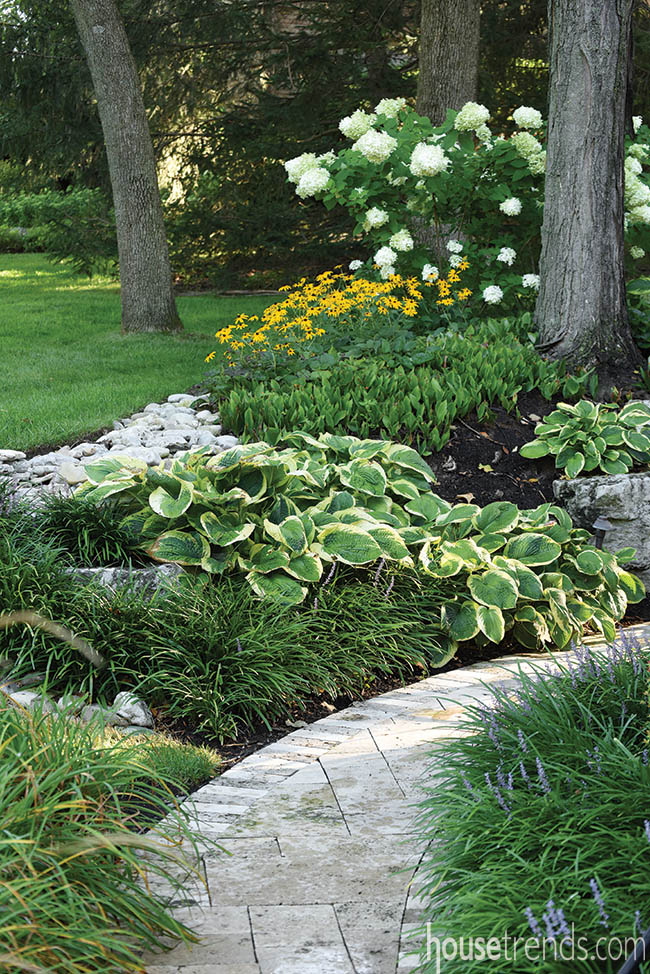 A variety of plants add color to an outdoor space