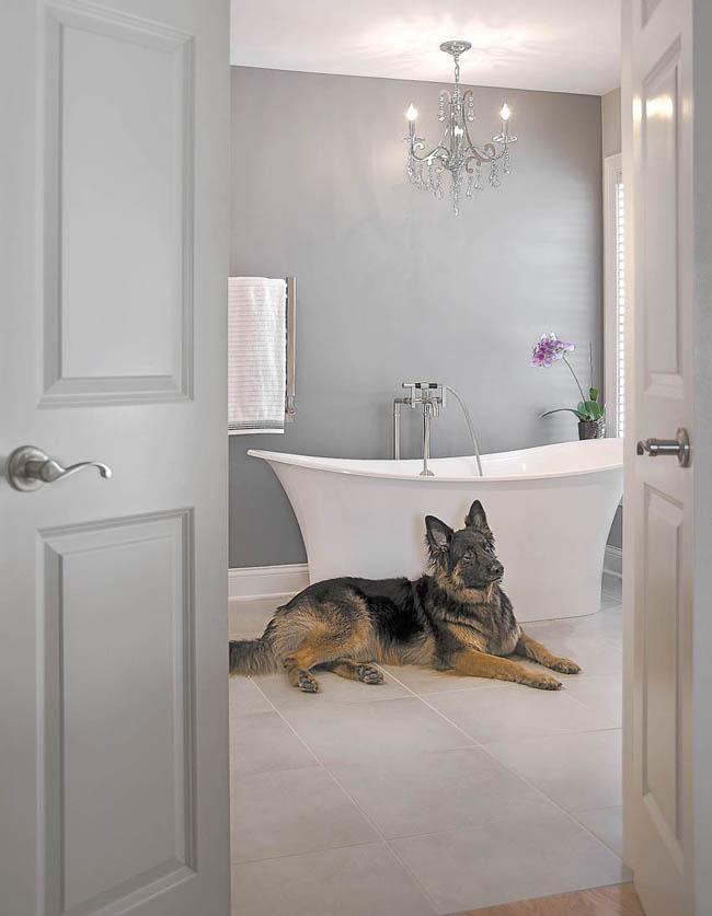 Tile floor cools a dog off