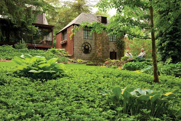 Backyard landscaping ideas highlight natural surroundings