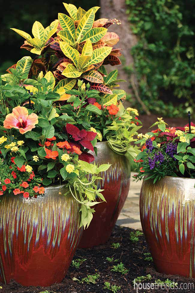 Planters add visual interest to a back yard