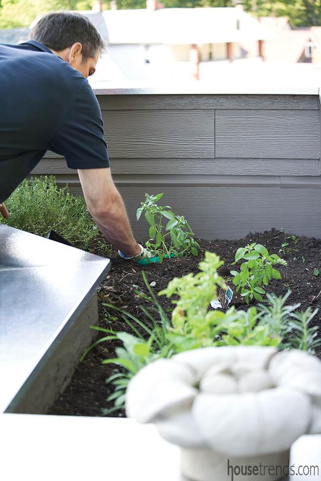 Deck plays host to an herb garden