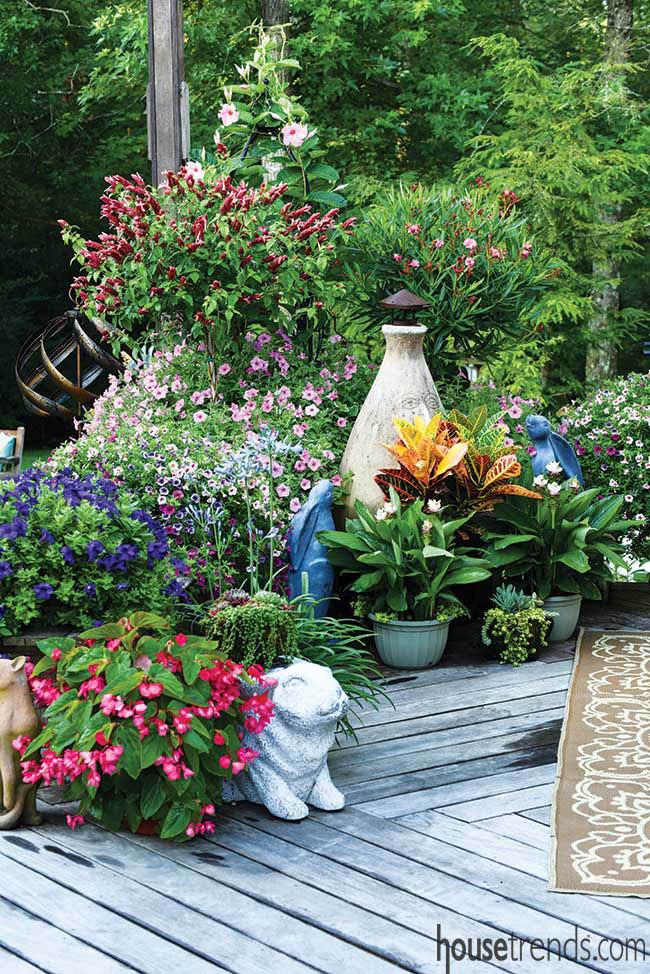 Petunias lend color to a garden