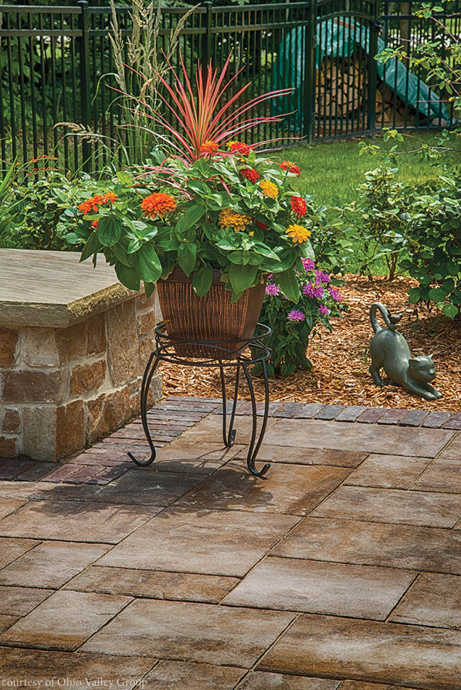 Colorful flowers add life to a back yard