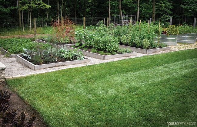 Organic raised vegetable beds