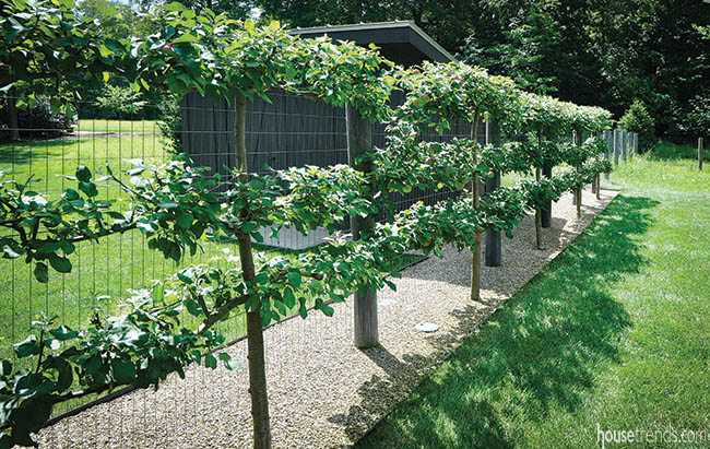 Wire fence runs through a landscape design