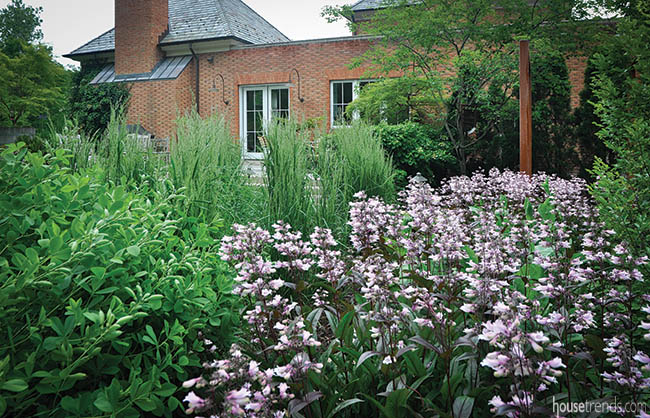 Garden plants add color and texture to a landscape design