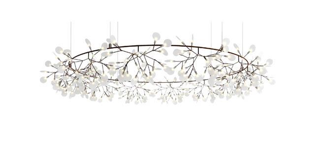 Lamp reflects a natural design