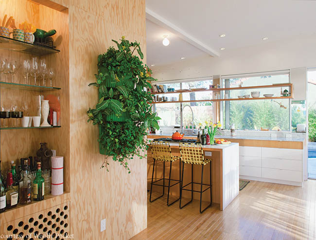 Planter introduces the outdoors to a kitchen