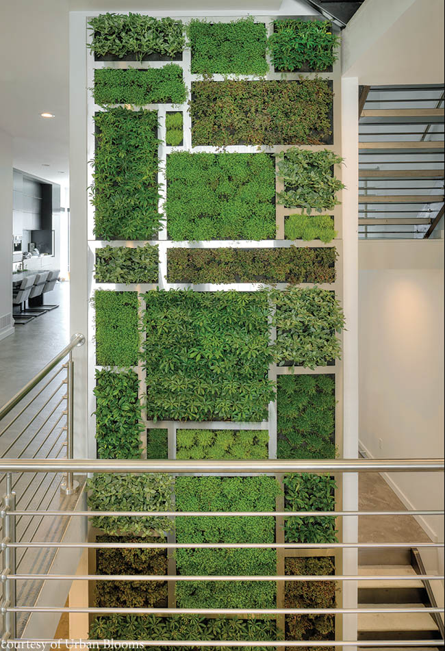 Living wall spans multiple levels