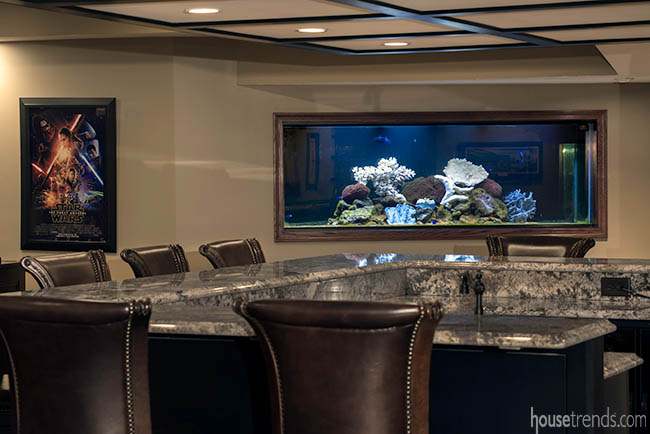 Saltwater fish tank in a basement