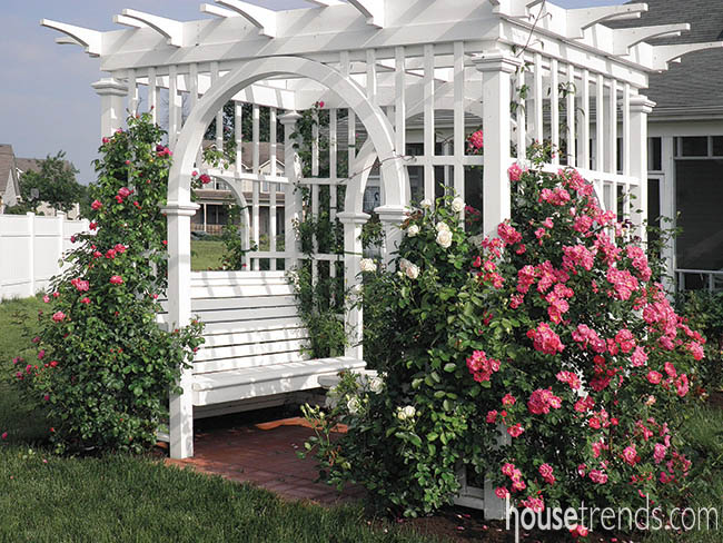 Roses add a colorful twist to a pergola