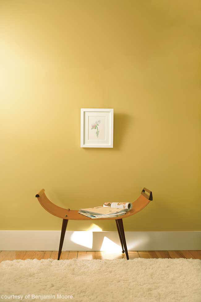 Yellow walls warm up a sitting area